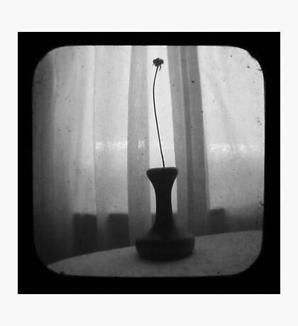 Vase Silhouette B&W TTV Photographic Print