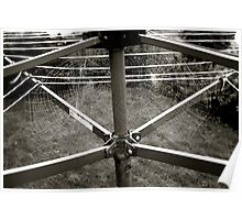 Spider's Webs on the Washing Line - Lindfield Poster