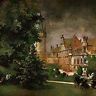 Bożków Castle...1890 y by andy551