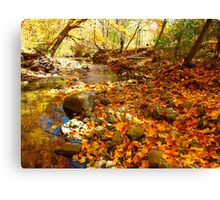 Round the bend and into that fine Fall day Canvas Print