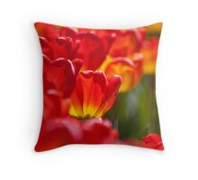 Orange and Red Tulip Array Throw Pillow
