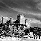 Castillo de Almodovar del Rio by EllensEye