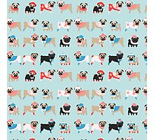Super Cute Christmas Pugs on Light Blue Background Photographic Print