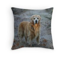 The Ray of Sunshine! Featured Photo Throw Pillow