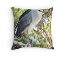 Black-crowned Night Heron ~ Adult Throw Pillow