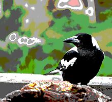 Backyard Magpie #8 of 8 by JoBling