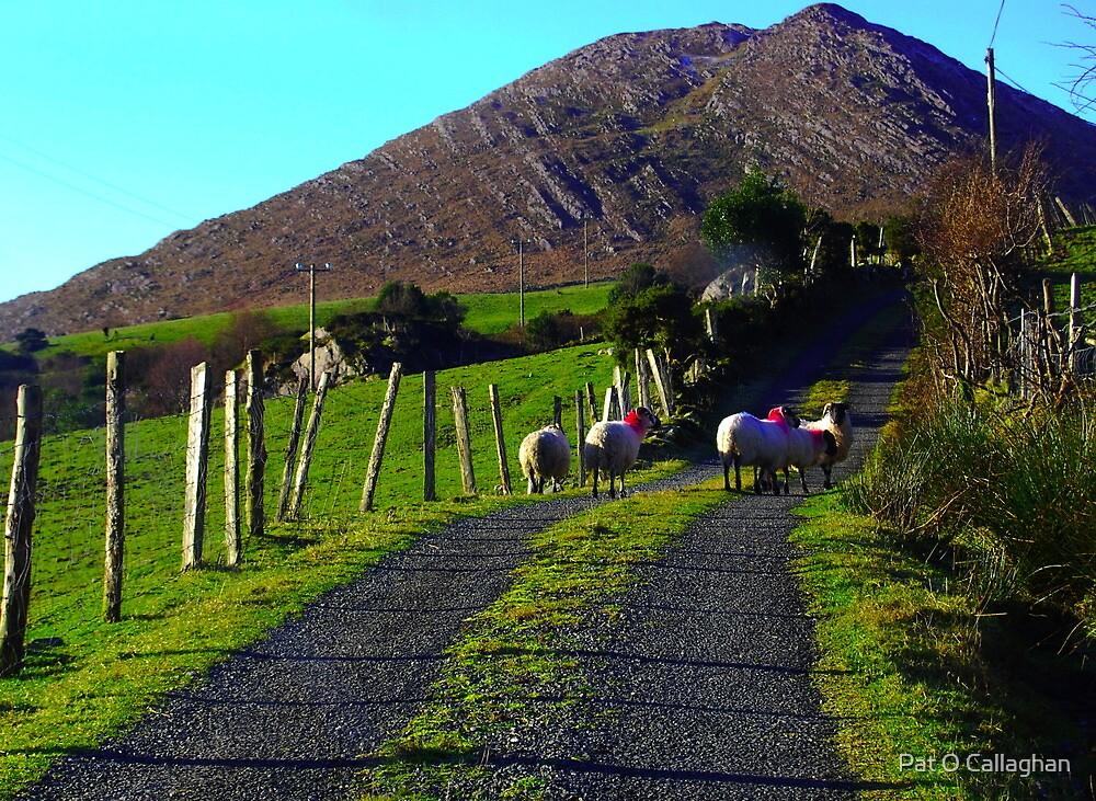 Roadblock - Kenmare, Co.Kerry, Ireland by Pat O Callaghan