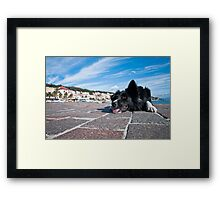Just waiting Framed Print