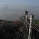 Fence to the Sea by XtomJames