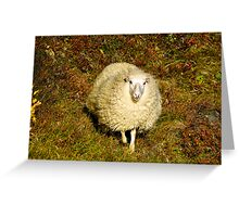 Curly Blond Greeting Card