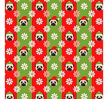 Christmas Pugs and Flowers on Red, Green Stripes Photographic Print