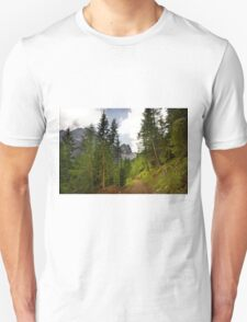 View  Mountain  Ilm Spitze  T-Shirt