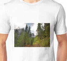View  Mountain  Ilm Spitze  Unisex T-Shirt