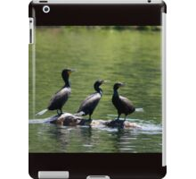 Three Cormorants on Rock iPad Case/Skin