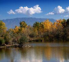 Rio Grande Nature Center 09 by Karl Eschenbach