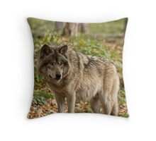 The Greeting Throw Pillow