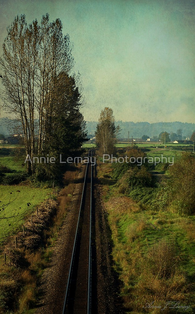 Matsqui in the Fall by Annie Lemay  Photography