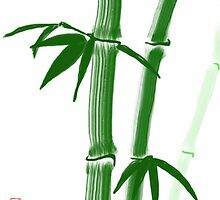 Bamboo Drawn on iPad by Ray Cassel