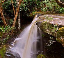 Somersby Falls 6-11-10 (unnamed 3m fall) by Warren  Patten