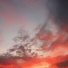 November Evening 2 by Barbara Wyeth