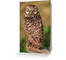 If Looks Could Kill Greeting Card