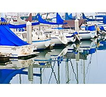 Oceanside Harbor Photographic Print