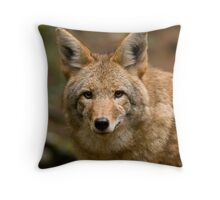 Wiley....Up Close And Personal Throw Pillow