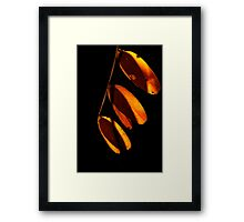 3 Down Framed Print