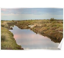 Wetlands Canal at sunset Poster