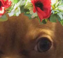 Flower Crown Chihuahua Sticker
