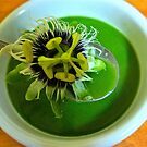 Spinach Soup with a SURPRISE! by D. D.AMO