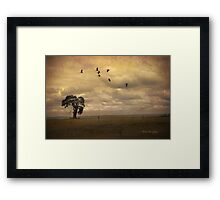 Shadows from the sky Framed Print