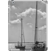 Peaceful  iPad Case/Skin