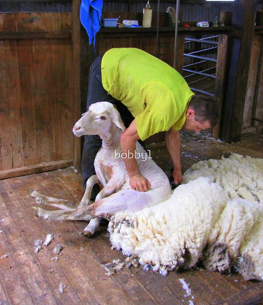 Shearer by bobby1