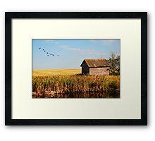 fall on the prairies Framed Print