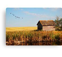 fall on the prairies Canvas Print