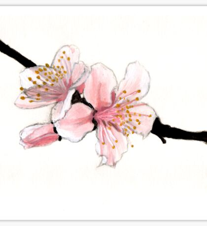 Blossom Study Sticker
