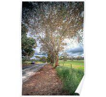 Gum Tree Dreaming - Blakiston Road, Blakiston, Adelaide Hills Poster