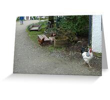Cluck Greeting Card