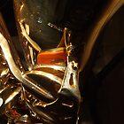 Alto Saxophone 01 by exvista