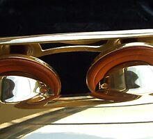 Alto Saxophone 06 by exvista