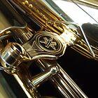 Alto Saxophone 07 by exvista