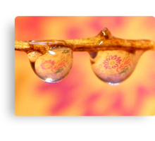 Looking through rose colored glasses Canvas Print