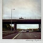 Horse on the bridge Polaroïd by Laurent Hunziker