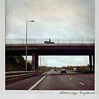 Horse on the bridge Polaroïd by Laurent Hunziker