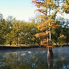 Fall on the Bayou by BShirey