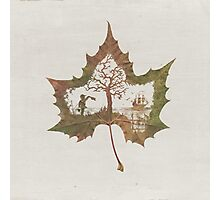 The Memories of a Leaf: Good Bye Photographic Print