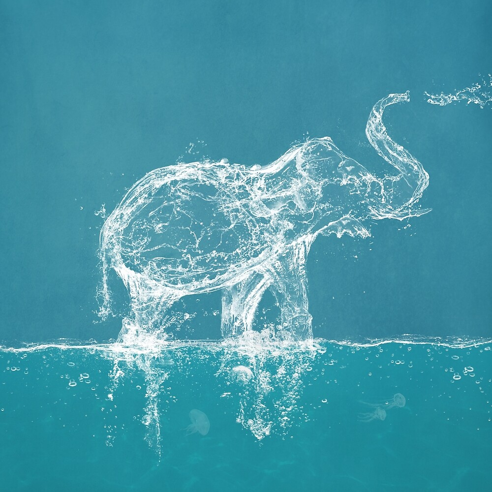 The Water Elephant by Paula Belle Flores