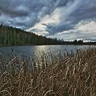 Seeley Lake by Doug Keech