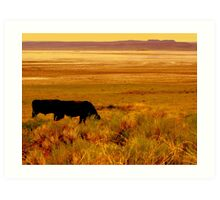 SW Oregon, The Outback Art Print